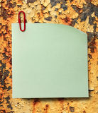 Blank green sticker and red clip Stock Photography