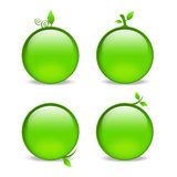 Blank green web icons with leaf embellishments. Empty green apple style icons with leaf details Stock Images