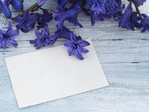 Blank greeting card. In the beautiful floral arrangement Royalty Free Stock Photos