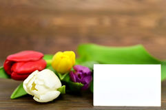 Blank greeting card with colorful tulips. Wooden background Royalty Free Stock Photos