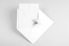 Blank greeting card in envelope with flower Royalty Free Stock Image