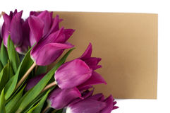 Blank greeting card and envelope with purple tulips over white isolated background. Top view Stock Photos