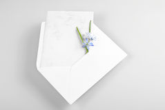 Blank greeting card in envelope with spring flowers Stock Photography