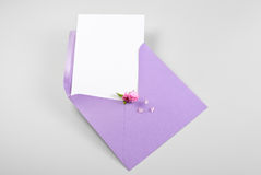 Blank greeting card in envelope with spring flowers and petals Stock Photography