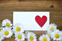 Blank greeting card with heart on it  and daisies Stock Image