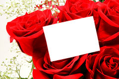 Blank greeting card and roses Royalty Free Stock Image