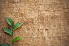 Blank Grungy Canvas Background Royalty Free Stock Photo