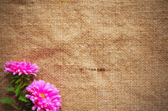 Blank Grungy Canvas Background Stock Images