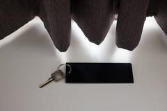 Blank hotel key Stock Photography