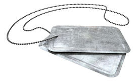 Blank Identity Dog Tags Perspective Stock Image