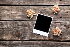 Blank instant photo frame with dried flowers Stock Images