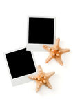 Blank instant photo prints and sea stars Stock Image