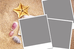 Blank instant photos frames on sand and seashells Stock Image