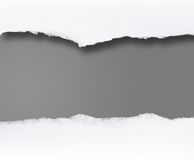Blank Message Scroll Stock Photography