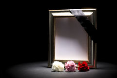 Blank mourning frame with three carnations royalty free stock images