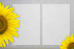 Blank mulberry papers with sunflower Royalty Free Stock Photos