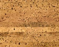 Blank natural cork texture Royalty Free Stock Image