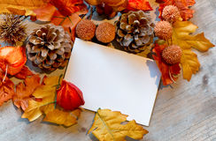 Blank Note Amongst Autumn Foliage Stock Photography
