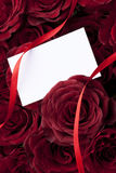 Blank note around red roses Royalty Free Stock Images