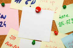 Blank note on cork board Royalty Free Stock Photo