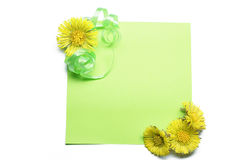 Blank note with flowers Stock Image