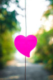 Blank note pad or sticky notes pink with bokeh sunlight outdoor Royalty Free Stock Photography