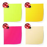 Blank note paper in four colors with ladybug Stock Images