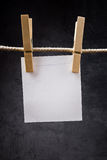 Blank note paper hanging on rope with clothes pins Stock Images