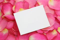 Blank note on  petals Royalty Free Stock Photos