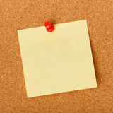 Blank note pinned to corkboard Royalty Free Stock Photo