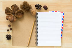 Blank notebook with airmail envelope dried pine cone chestnut wa Stock Image