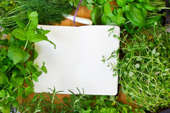 Blank notebook for recipes. With colorful vegetables Royalty Free Stock Image