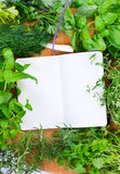 Blank notebook for recipes with herbs. Blank notebook for recipes with green herbs Royalty Free Stock Photo