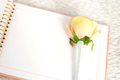 Blank notebook and rose on a white carpet Royalty Free Stock Images