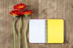 Blank notebook and three gerberas Stock Images