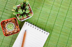 Blank notebook and wooden pencil with cactus. Royalty Free Stock Photo