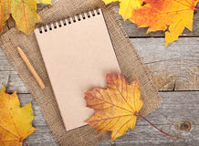 Blank notepad and colorful autumn maple leaves Stock Photography
