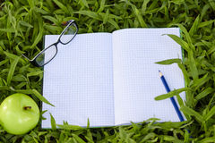 Blank notepad for copy space on green grass. Blank notepad for copy space on green grass with apple and pencil Royalty Free Stock Image