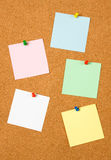 Blank notes on cork board. Blank notes pinned on cork notice board Stock Image