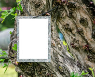 Blank notice card hanging on the tree Royalty Free Stock Photos