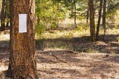 Blank notice on tree trunk Stock Photo