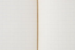 Blank from old copybook Royalty Free Stock Image