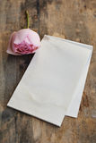 Blank old paper and roses Stock Images
