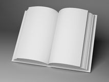 Blank open book Stock Image