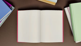 Blank Open Book. Surrounded by stacks of closed books Stock Images