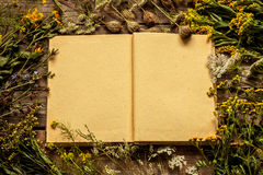 Blank opened book with late summer natural meadow flowers and plants around. Layout with free text space, captured from above. Vintage wooden background Stock Image