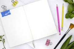 Blank page of sketchbook with green leaf and art tools. Creative artistic flat lay with empty spread of notebook. White paper sketchbook mockup. Summer art stock photos