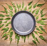 Blank pan with herbs arugula around place for text, frame wooden rustic background top view Royalty Free Stock Photos