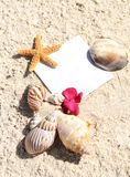 Blank paper beach sand starfish shells summer Royalty Free Stock Photo