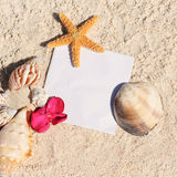 Blank paper beach sand starfish shells summer Royalty Free Stock Photos